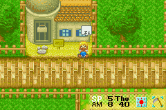 Harvest Moon - More Friends of Mineral Town - What I do while waiting - User Screenshot
